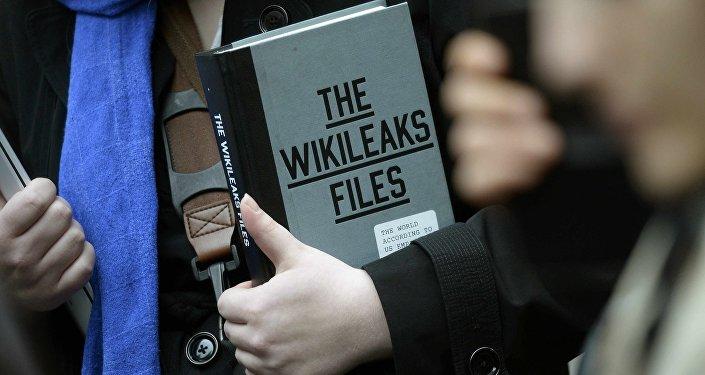 revelations wikileaks